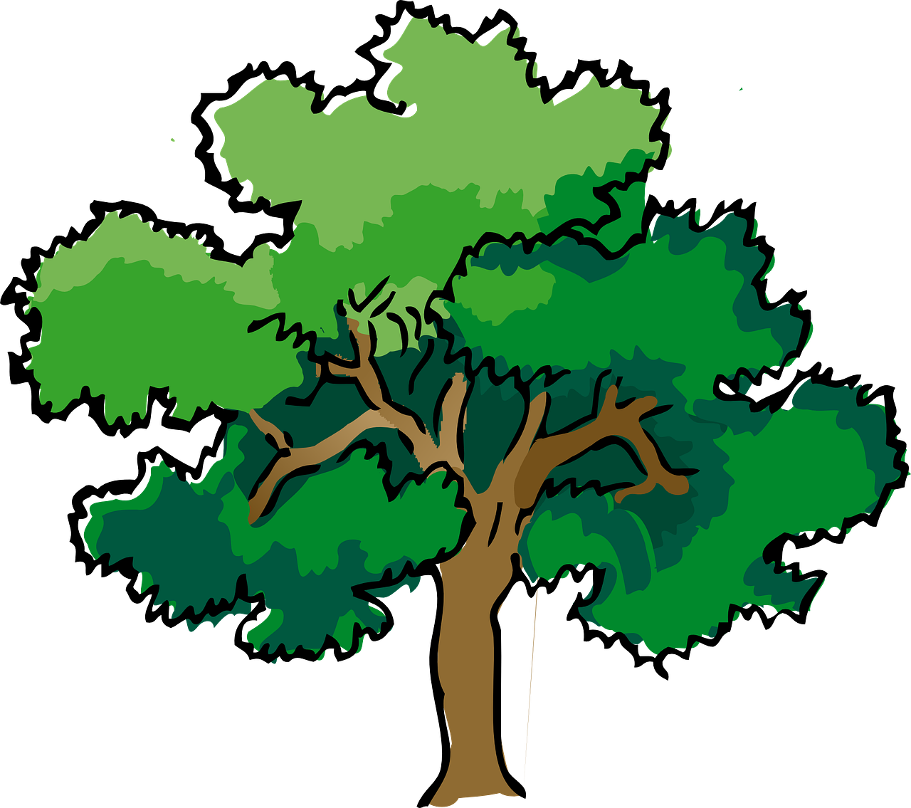 OAK TREE REVIEWS